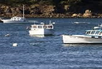 Lobster Boats Bar Harbor Maine